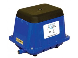 Evolution Aqua Airpumps